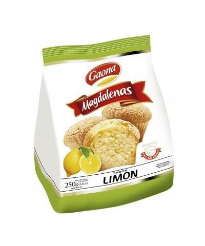 MAGDALENAS GAONA LIMON